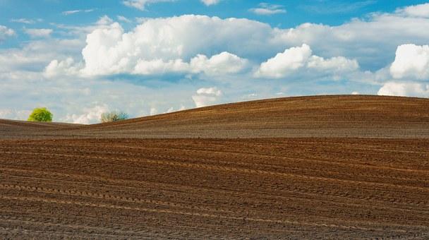 С дисковите брани от MASS си гарантирате ефективно и рентабилно земеделие